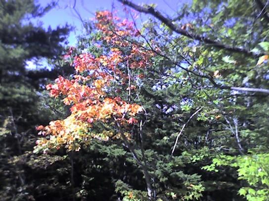 photo_091207_005.jpg
