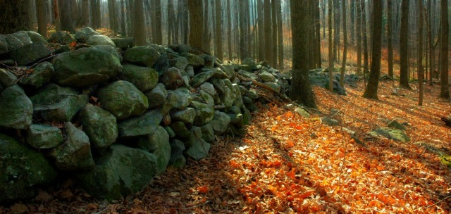 stone-wall2