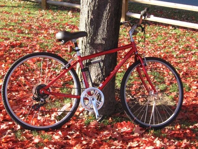 bikemaple