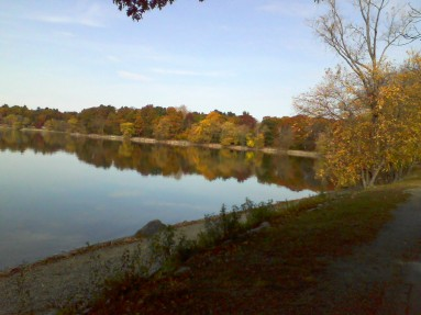 Jamaica Pond in November -- forgive the poor phone-camera quality